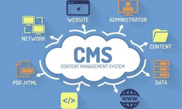 ¿Qué es un CMS? Pulso Digital